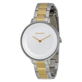 Skagen Women's SKW2339 Two-Tone Stainless Steel Bracelet Watch (Parallel Import)