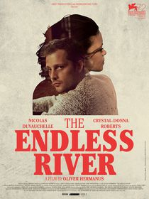 The Endless River (DVD)
