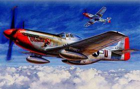 1:32 P-51D Mustang model kit
