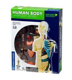 Nature Discovery - Human Anatomy