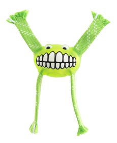 Rogz - Flossy Grinz 190mm Oral Care Dog Toy - Lime