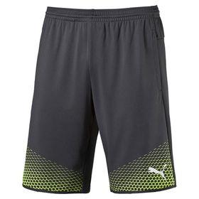 Men's Puma IT evoTRG Shorts Touch