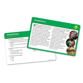 Learning Resources Reading Comprehension Cards - Year Group Five