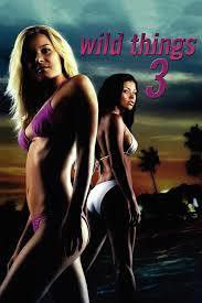 Wild Things 3 (DVD)