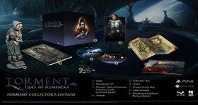 Torment Tides of Numenera Collectors (PS4)