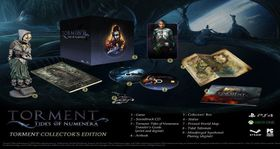 Torment Tides of Numenera Collectors (PC)