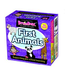 BrainBox  First Animals Preschool