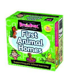 BrainBox  First Animal Homes Preschool
