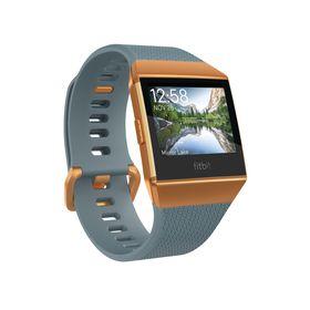 Fitbit Ionic - Slate Blue Burnt Orange