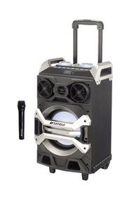 Sansui Portable PA Speaker