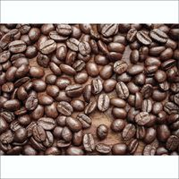 1Wall Brown Café Coffee Bean Wallpaper Wall Mural - 4 Piece