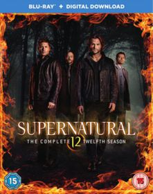 Supernatural: The Complete Twelfth Season (Blu-ray)