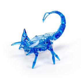 Scorpion Blue