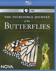 Incredible Journey of the Butterflies - (Region A Import Blu-ray Disc)