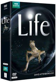 Life - (parallel import)