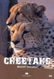 Wildlife Paradise - Cheetahs (DVD)