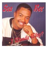 Sea Bee - I Wanda Why (CD)