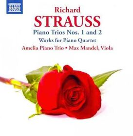 Strauss / Amelia Piano Trio / Mandel - Piano Trios Nos.1& 2 / Works For Piano Quartet (CD)