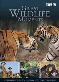 Great Wildlife Moments Introduced by David Attenborough - (DVD)