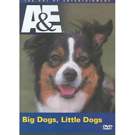 Big Dogs Little Dogs - (Region 1 Import DVD)