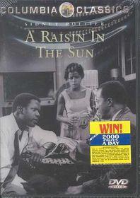 Raisin in the Sun - (Region 1 Import DVD)