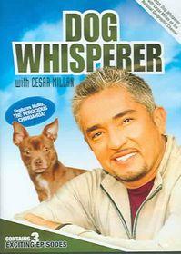 Dog Whisperer with Cesar Millan:V 1 - (Region 1 Import DVD)