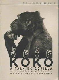 Koko:Talking Gorilla - (Region 1 Import DVD)