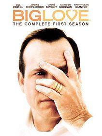 Big Love:Complete First Season - (Region 1 Import DVD)