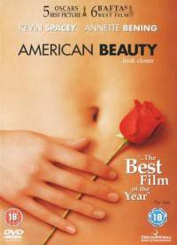 American Beauty - (Import DVD)
