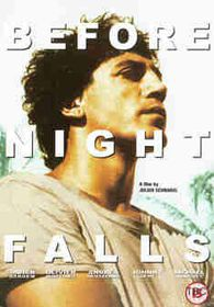 Before Night Falls - (Import DVD)