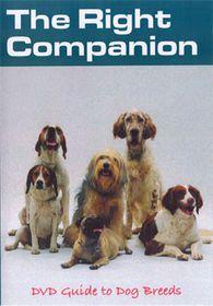 Right Companion-Dog Breeds - (Import DVD)