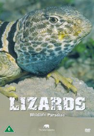 Wildlife Paradise-Lizards - (Import DVD)