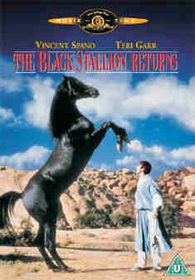 Black Stallion Returns - (Import DVD)