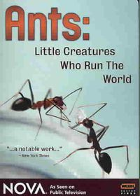 Ants - Little Creatures Who Run the World - (Region 1 Import DVD)