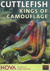 Cuttlefish:Kings of Camouflage - (Region 1 Import DVD)