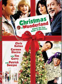 Christmas in Wonderland (2007) (DVD)