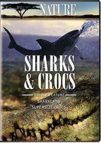 Nature:Crocs & Sharks - (Region 1 Import DVD)