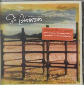 Outside Looking in:Best of - (Import CD)