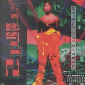 2 Pac - Strictly 4 My N.I.G.G.A.Z. (CD)