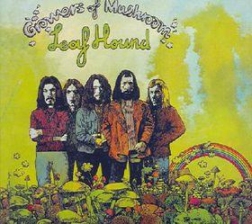 Growers of Mushroom - (Import CD)