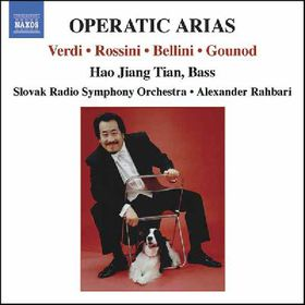 Operatic Arias - Various Artists (CD)
