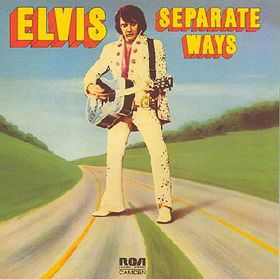 Separate Ways - (Import CD)