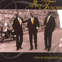 Afro Tenors - This Is The Moment (CD)