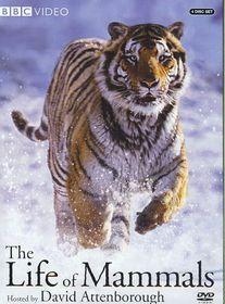 Life of Mammals - (Region 1 Import DVD)