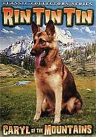 Rin Tin Tin Collection Vol 1 (Adventu - (Region 1 Import DVD)