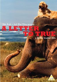 Letter to True - (Import DVD)