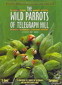 Wild Parrots of Telegraph Hill Collec - (Region 1 Import DVD)