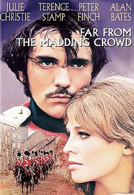 Far from the Madding Crowd - (Region 1 Import DVD)