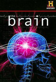 Brain - (Region 1 Import DVD)