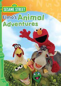Elmo's Animal Adventures - (Region 1 Import DVD)